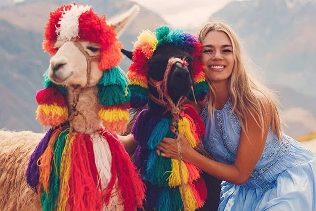 hello llama!